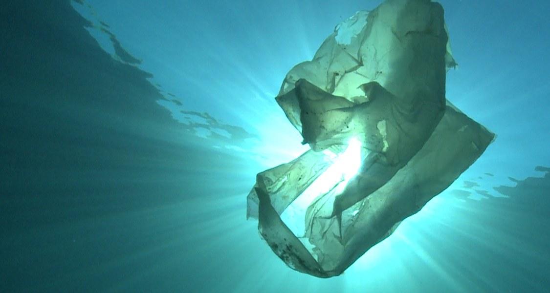 Bild von  Mikroplastik im Meer