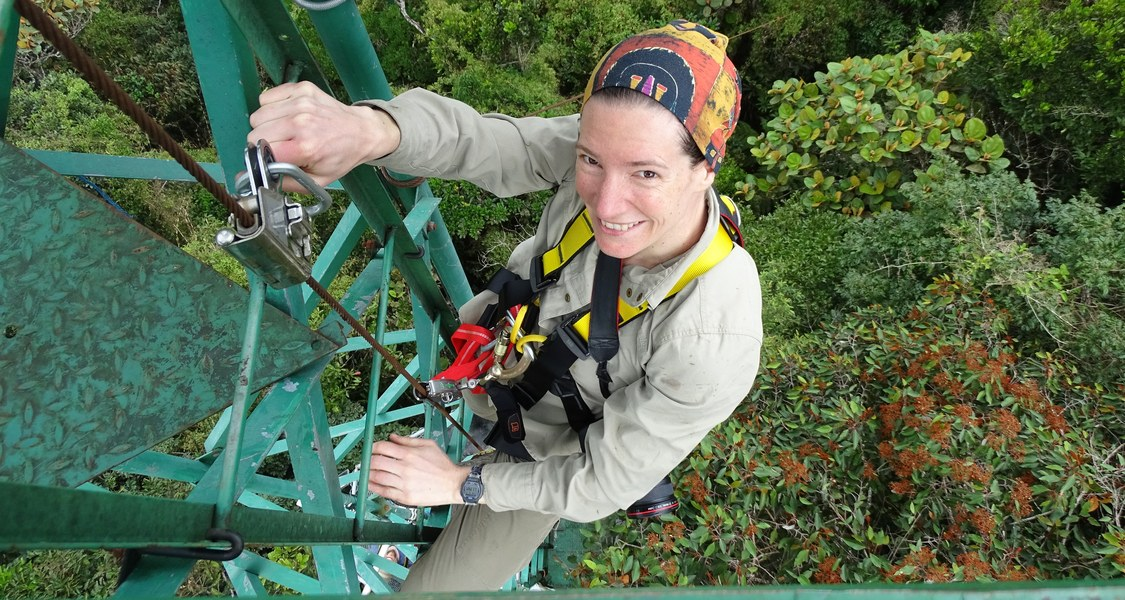 Ansicht von Turm mit heraufkletternder Wissenschaftlerin