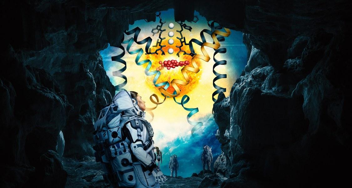 Hier kommt keiner raus! Ein internationales Forschungsteam erkundete die exotische Welt der Ionenkanäle und stieß auf Moleküle, die den Durchgang verbarrikadieren.