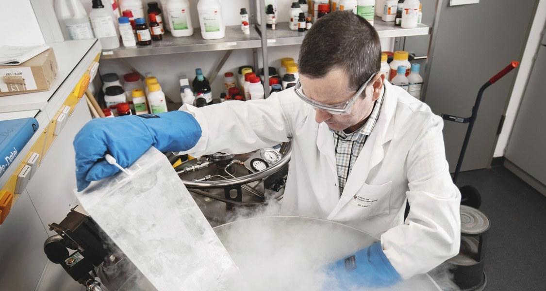 Professor Dr. Matthias Lauth forscht am Marburger Zentrum für Tumor- und Immunbiologie und leitet die Forschungsarbeit des Konsortiums KFO325. (Foto: Henrik Isenberg)