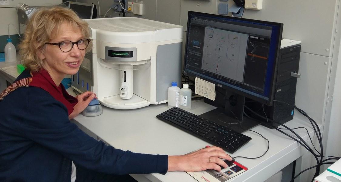 Die Biologin Magdalena Huber von der Philipps-Universität analysierte gemeinsam mit Wissenschaftlerinnen und Wissenschaftlern aus Berlin, München und Marburg, wie sich Immunzellen bei allergischem Asthma im Kindesalter verändern.  (Foto: Felix Neuhaus