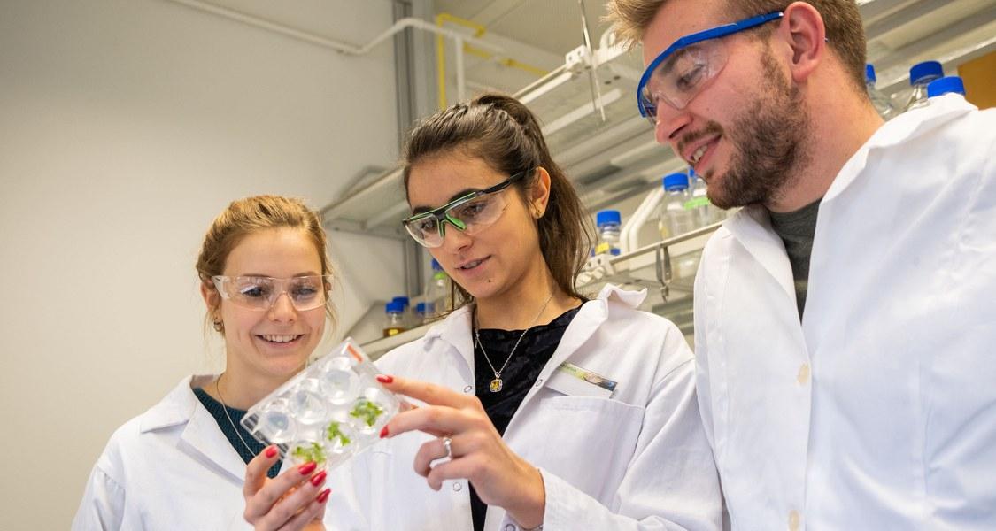 Foto von Studierenden im Labor