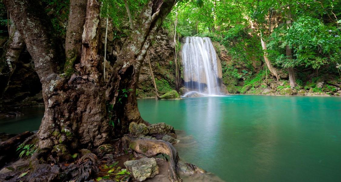Wasserstelle mit Wasserfall in einer Dschungelszene