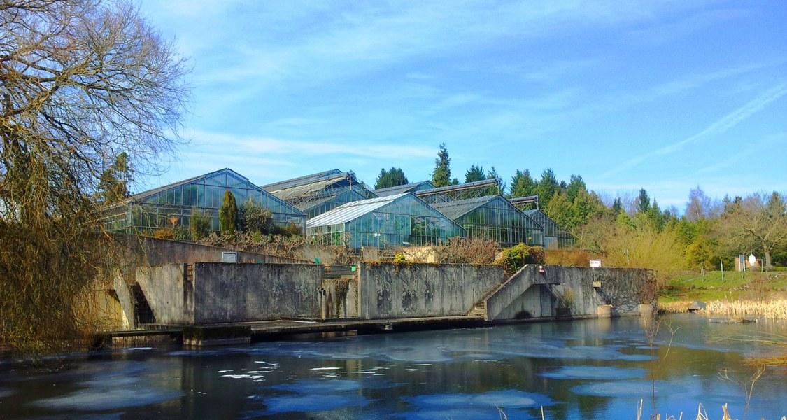 Das Foto zeigt den Botanischen Garten Marburg im Winter.