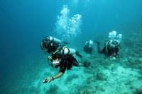 Ausbildung der saudi-arabischen Teamkollegen im Tauchen und in der Unterwasserarchäologie