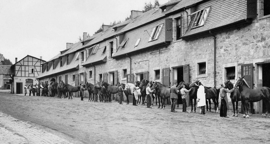 Pferdeappell durch Dr. Albert Demnitz, 1930er Jahre