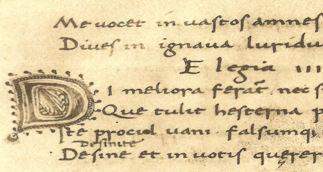 Ausschnitt eines Scans des F. 26 r. aus Codices Graeci et Latini photographice depicti, tomus XIV: Tibulli carmina, Sapphus Epistula Ovidiana, Codex Guelferbytanus 82.6 Aug., Leiden 1910.