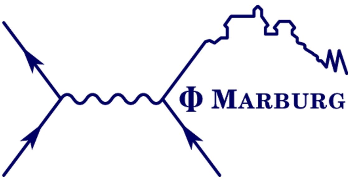 Unser FS-Logo