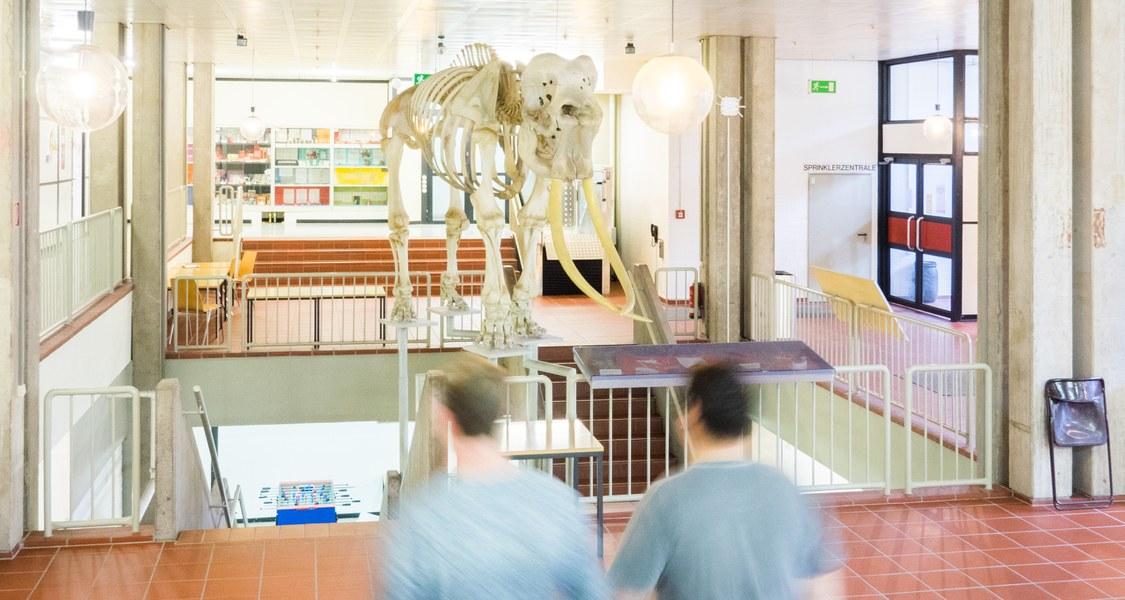 Studierende vor Elefant Jack - Nordfoyer FB Biologie