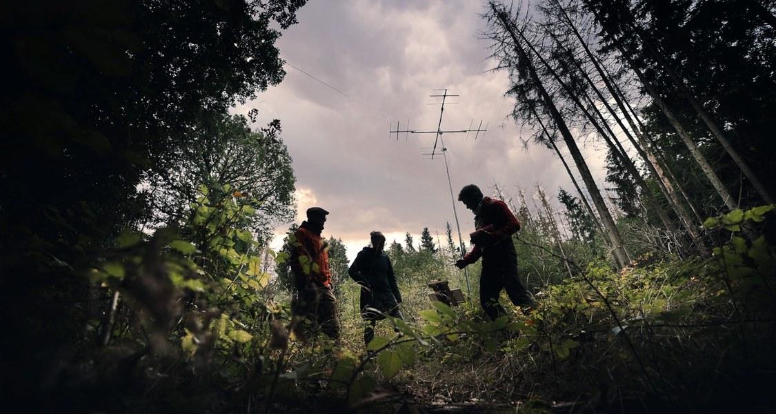Drei Personen im Wald vor einer Antenne. Foto aus dem Natur 4.0-Projekt.