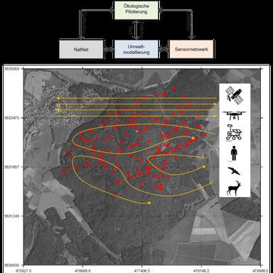 Grafik zeigt den Universitätswald mit Sensoren und einer Übersicht über die drei Projektbereiche.
