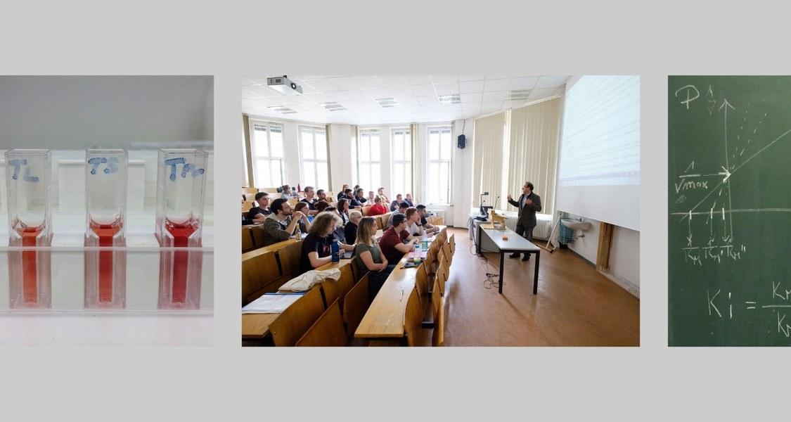 Verschiedene Szenen aus Praktika und Vorlesung
