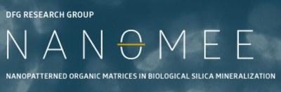 Logo: FOR 2038 - Die Rolle nanostrukturierter organischer Matrizen in der biologischen Mineralisation des Silica