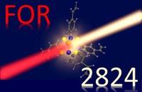 Logo der Forschungsgruppe