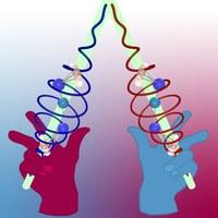 Logo: SFB 1319 - Extremes Licht zur Analyse und Kontrolle molekularer Chiralität (ELCH)