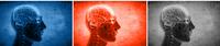 Abbildung: Logo des Schwerpunktprogramms SPP 1608 - Ultraschnelle Informationsübertragung und hohe zeitliche Präzision: normale und funktionsgestörte Hörmechanismen