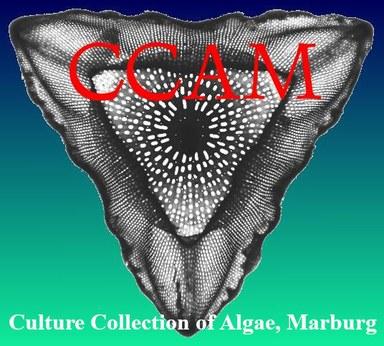 Algenkultursammlung