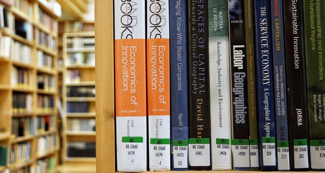 Auf RVK umgearbeiteter Bestand der Bibliothek Geographie