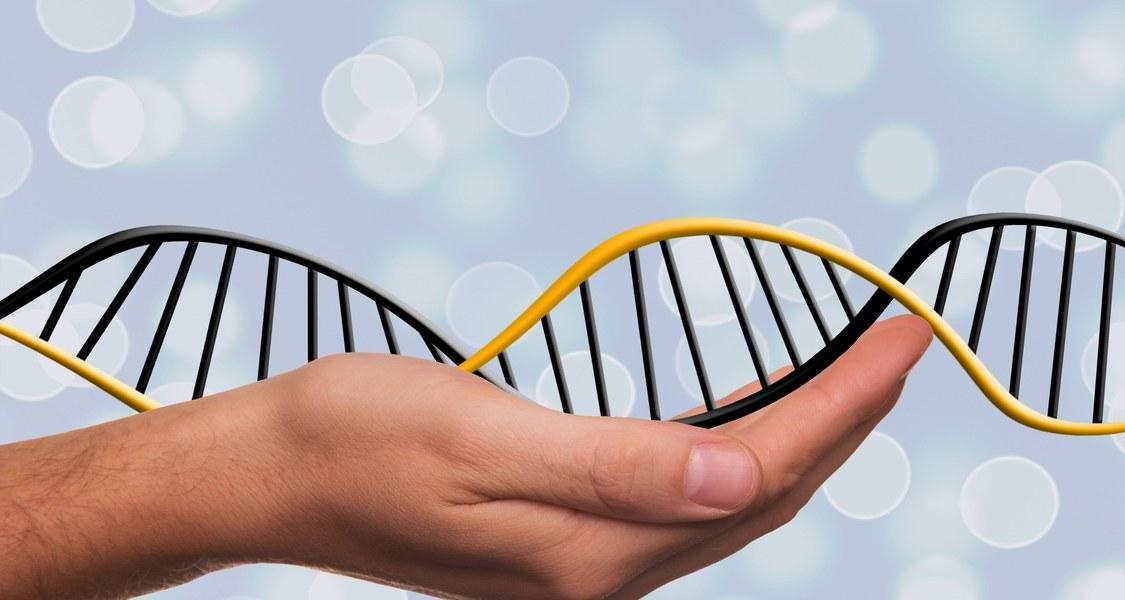 DNA Strang auf menschlicher Hand