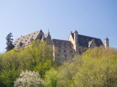 Landgrafenschloss hinter frühlings-grünen Bäumen