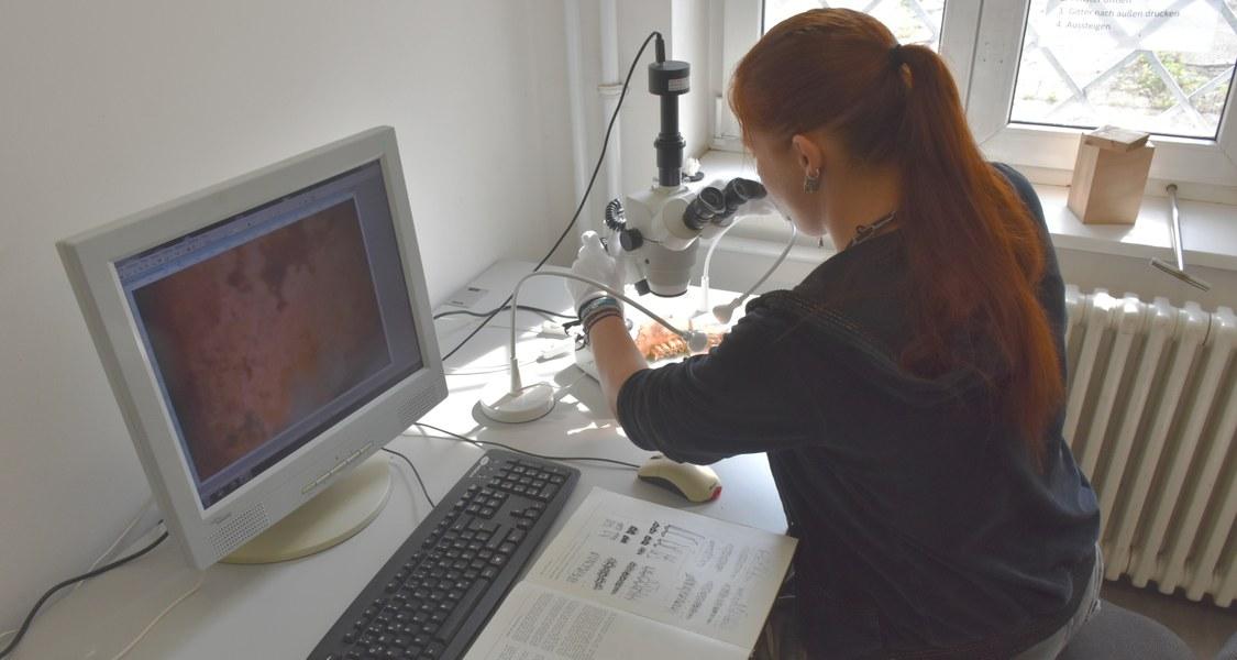 Mikroskopische Analyse von Keramikfunden