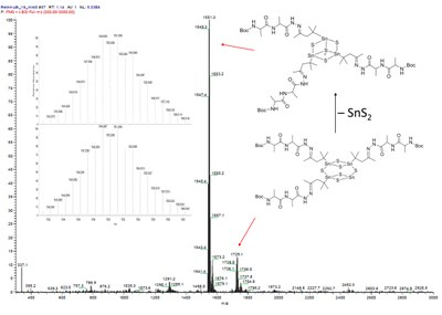 Here, you see the mass spectrum of the functionalized defect heterocuban [(R2Sn)3S4]