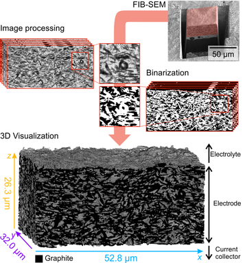 From a set of FIB-SEM image slices, the material (here, an electrode) can be reconstructed in 3D.