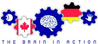 Logo the brain in action
